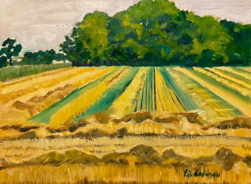 Hahn's Fields - 2020