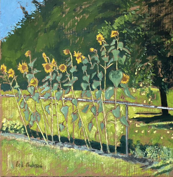 Sunflowers and Pears - 2020